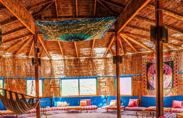 фотографии отеля Safari Beach Nuweiba изображение №7