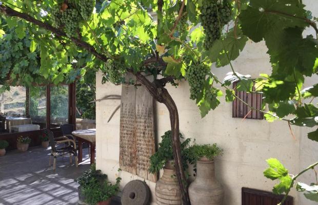фотографии отеля Aravan Evi изображение №3