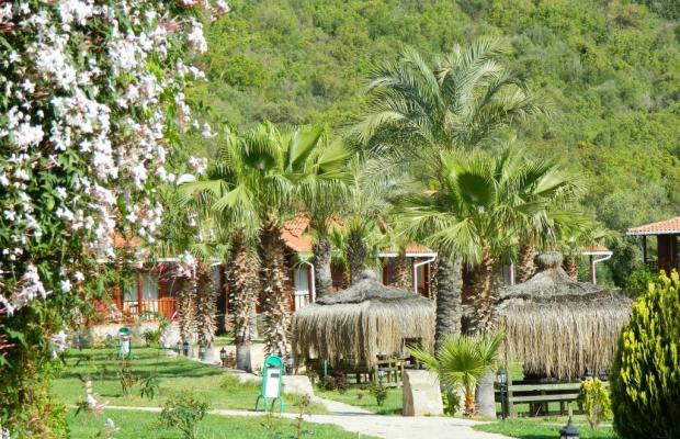 фотографии отеля Club Sun Village изображение №11