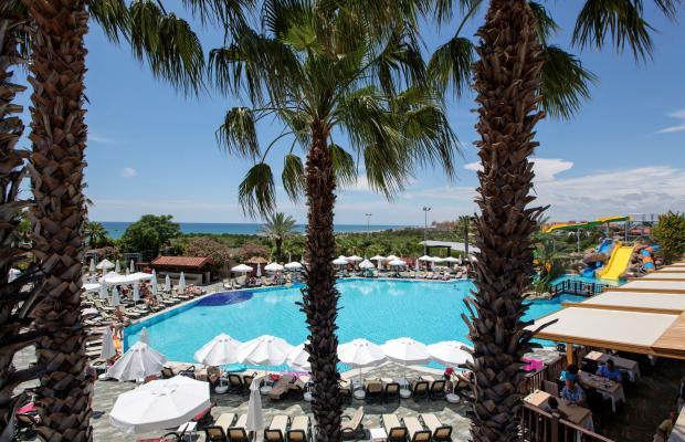 фотографии отеля Alba Resort изображение №23
