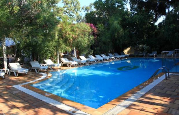 фото отеля Okaliptus изображение №1