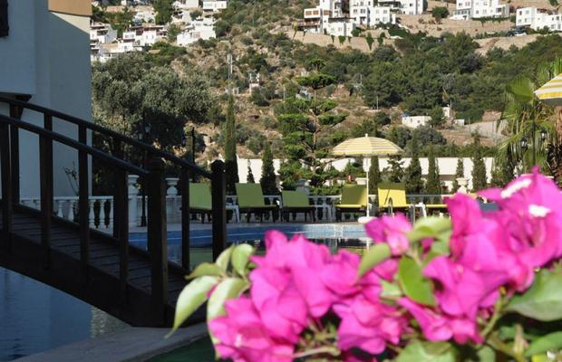 фото отеля Ale Suite изображение №9
