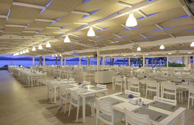фото Cocos The Club (ex. Sentido Bodrum Beach; Camel Bodrum Beach Club) изображение №22
