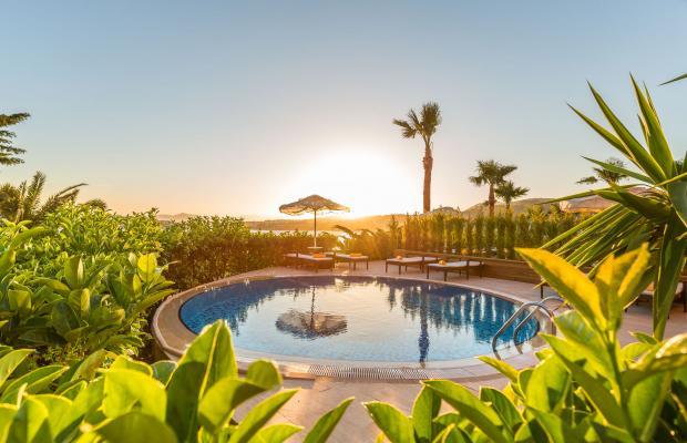 фото отеля Kefaluka Resort изображение №45