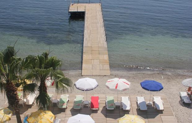 фото отеля Coastlight (ex. Polat Beach) изображение №13