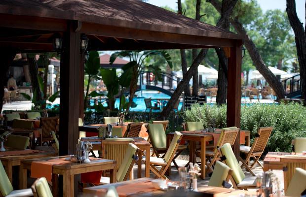 фотографии отеля Otium Hotel Life (ex. Magic Life Kemer) изображение №3
