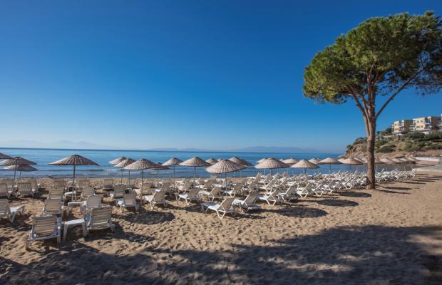 фотографии отеля Aria Claros Beach & Spa Resort (ex. Onyria Claros Beach & Spa Resort; Carpe Diem) изображение №31
