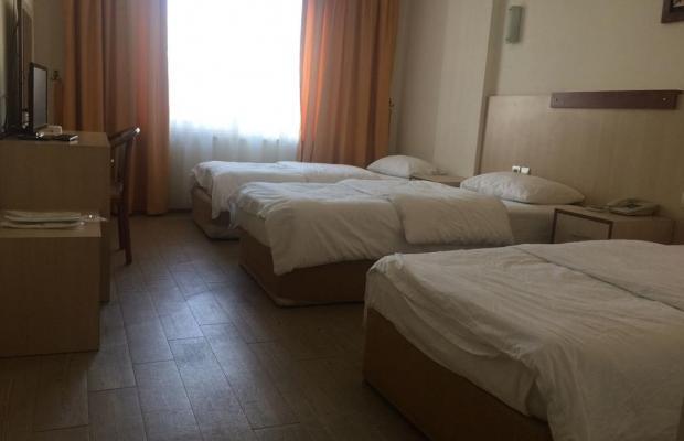 фотографии Safari Hotel изображение №12