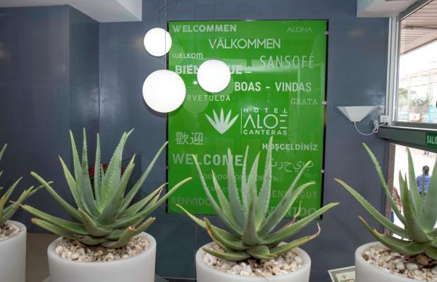 фото Aloe Canteras изображение №14