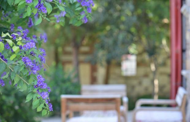 фотографии отеля Zeytin Konak изображение №15