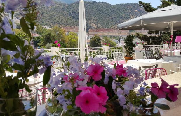 фотографии отеля Kalkan Suites (ех. Samira Garden) изображение №23