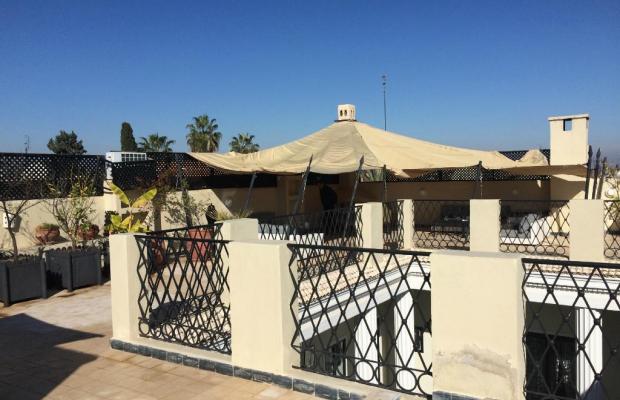 фотографии отеля Riad Lotus Perle изображение №3