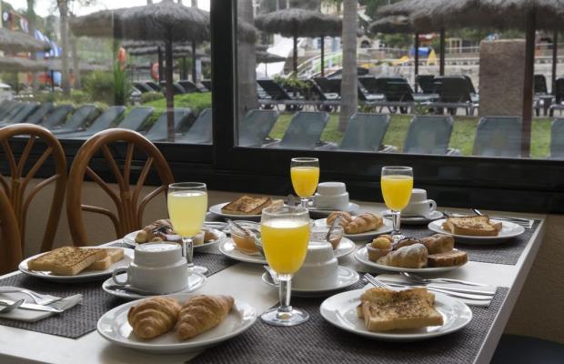 фотографии Rosamar Garden Resort изображение №16