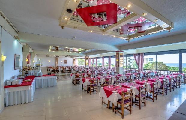фотографии отеля Cyprotel Florida (ex. Florida Beach Hotel) изображение №31