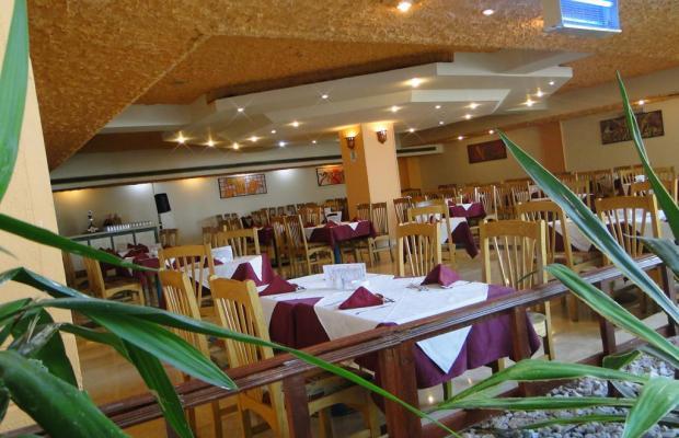 фотографии Sharm Holiday Resort изображение №16