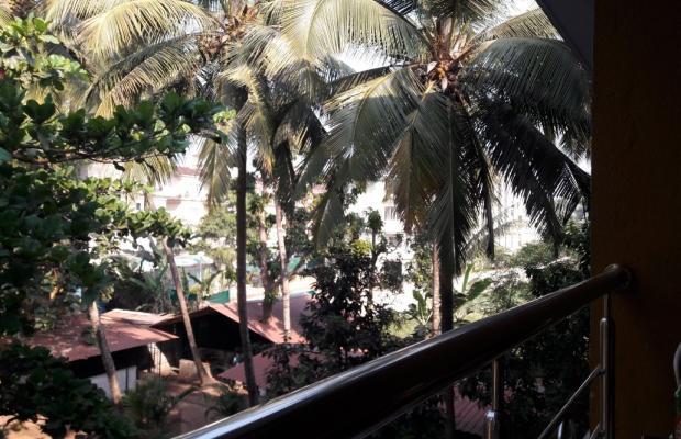 фотографии Palm Resort изображение №16